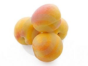 Pile Of Fresh Apricots Isolated On White Royalty Free Stock Photo - Image: 5818925