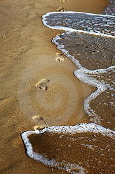 Footprints On The Beach Royalty Free Stock Image - Image: 5819386