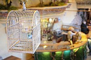 Avian Cell Stock Photo - Image: 5830390