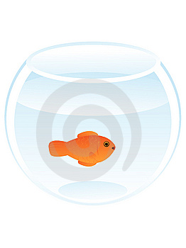 Koi Fish In Glass Bowl Stock Image - Image: 5883521