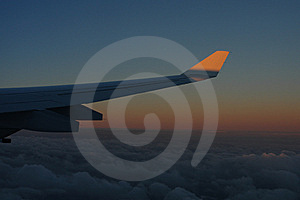 Wing Royalty Free Stock Photos - Image: 5884098