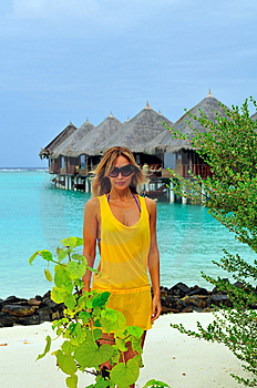 Life In Tropical Paradise Stock Images - Image: 5888084