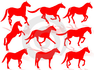 Horses Silhouettes Stock Photography - Image: 5889442