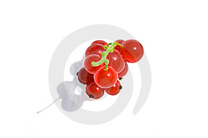 Taste Ripe Fruit Vitamins! Stock Image - Image: 5889481