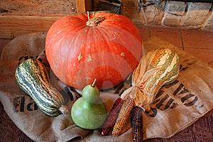 Harvest Group Royalty Free Stock Image - Image: 5897516