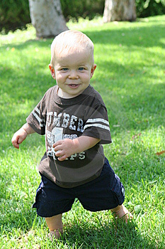 Standing Toddler On Grass Stock Image - Image: 5906691