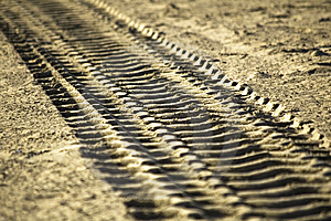 Track In The Sand Royalty Free Stock Image - Image: 5906896