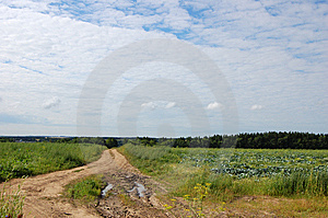 Winding Road Royalty Free Stock Images - Image: 5910219