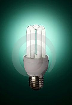 Green Florescent Light Bulb Stock Photo - Image: 5912430