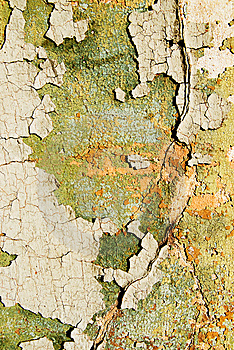 Abstract Grunge Texture Royalty Free Stock Photography - Image: 5918097
