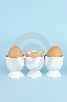 Hard Boiled Eggs Royalty Free Stock Photo - Image: 5946335