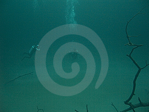 Rising From The Deep Stock Image - Image: 5951151