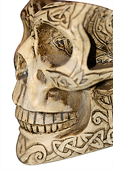 Skull With Ornaments Stock Photography - Image: 5960462