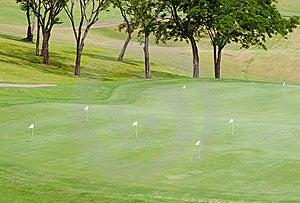 Practice Green In Tropics Stock Images - Image: 5969674
