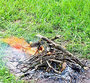 Fire On Nature Royalty Free Stock Photography - Image: 5972387