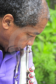 Jazz Musician Stock Photography - Image: 5981922