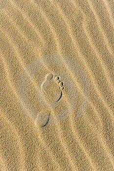 Footprint Stock Images - Image: 5994824