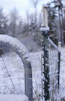 Winter Fence Free Stock Photography