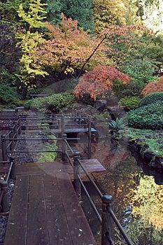 Japanese Garden Free Stock Photo
