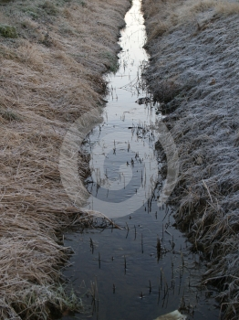 Frozen Brook Stock Image - Image: 607031