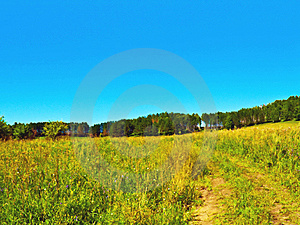 Summer Field With Road To Hill Forest Royalty Free Stock Image - Image: 6024486