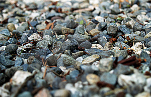 Gravel Stock Image - Image: 6024841