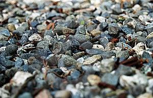 Gravel Stock Image - Image: 6024841