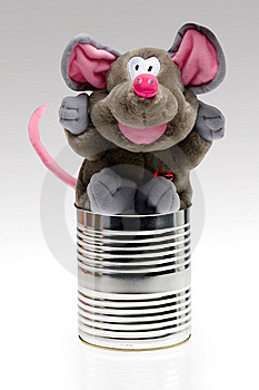 Stuffed Toy Animal In Can Stock Image