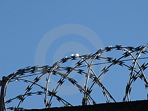 Wires Stock Photo - Image: 6040650