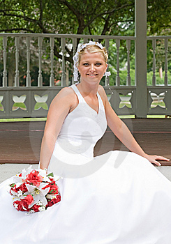 Bride On Her Wedding Day Royalty Free Stock Images - Image: 6064579