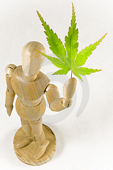 Wooden Man And Maple Leaf  Royalty Free Stock Images - Image: 6070929