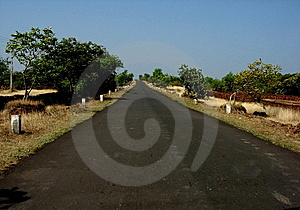 Straight Village Road Royalty Free Stock Photo - Image: 6075555