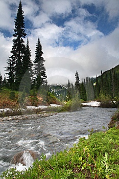 Mt. Rainier National Park Royalty Free Stock Photo - Image: 6099555