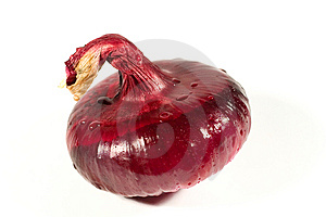 Closeup Of A Red Onion With Drops Of Water Royalty Free Stock Photography - Image: 6104517
