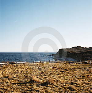 Field Along The Beach Royalty Free Stock Image - Image: 6109906