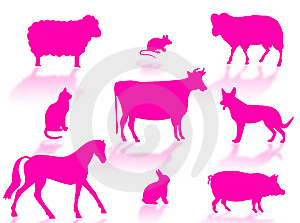 Farma zvířat siluety s stíny na bílém pozadí.