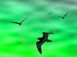 Birds Flight Royalty Free Stock Photography - Image: 6121437