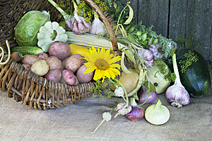 Harvest Stock Image - Image: 6128931