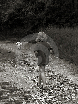 Boy Walking Dog Stock Images - Image: 6133324
