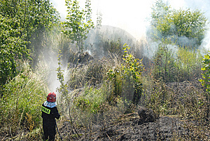 Fireman Fighting A Heath Fire Stock Images - Image: 6154634
