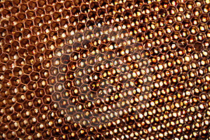 Honey Texture Stock Image - Image: 6162771