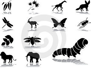 Set Icons - 45. Nature Stock Photography - Image: 6165502