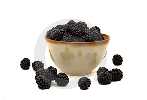 Brambles Royalty Free Stock Photo - Image: 6171475
