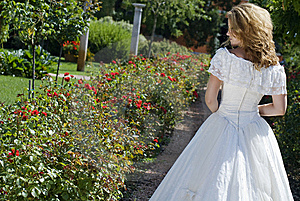 Bride Walking Along An Alley Royalty Free Stock Photo - Image: 6171605