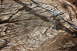 Aged Wood Texture And Barbed Wire Stock Photo - Image: 6177910