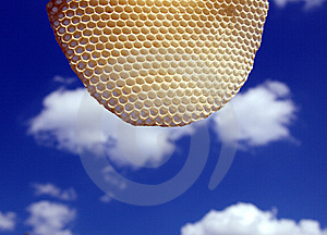 Sky Royalty Free Stock Image - Image: 6184726