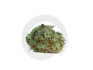 Marijuana and ganja details Stock Photos