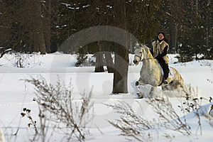 The Horsewoman Royalty Free Stock Photo - Image: 6194455