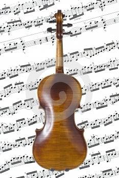 Violin Back Royalty Free Stock Photo