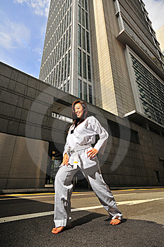 Corporate Karate 3 Stock Images - Image: 6203454